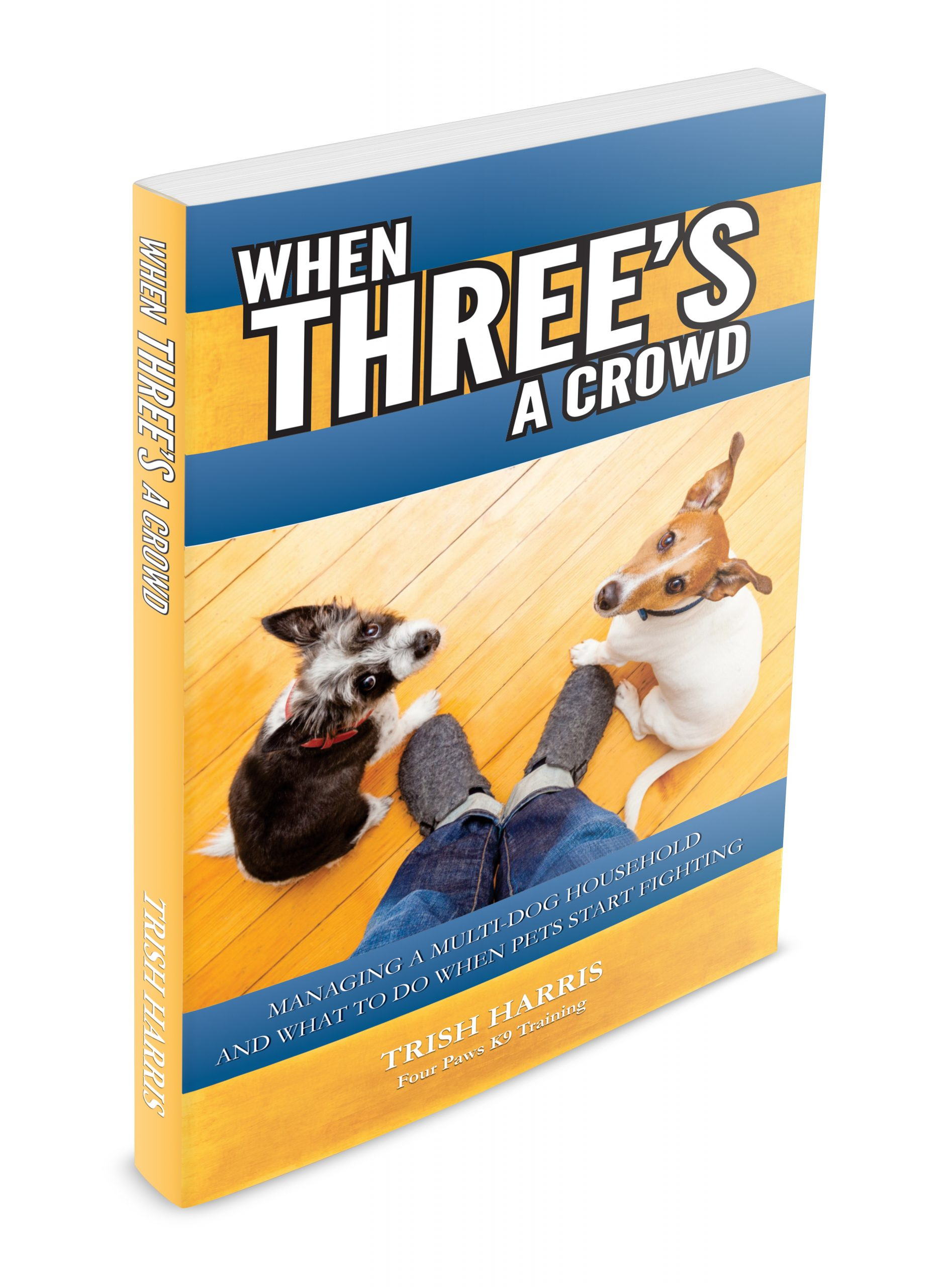 When Three's a Crowd 3D Cover